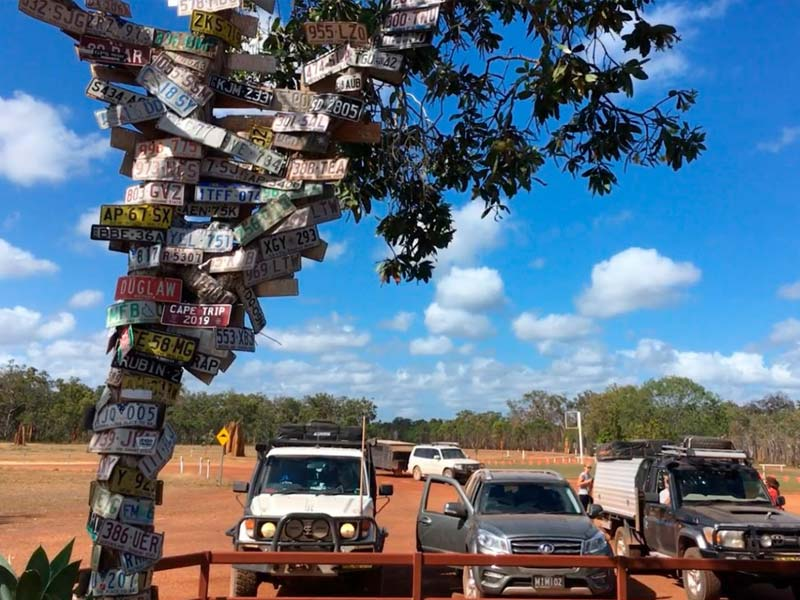 Number plate tree outside the Junction Roadhouse at Bramwell Station in Cape York